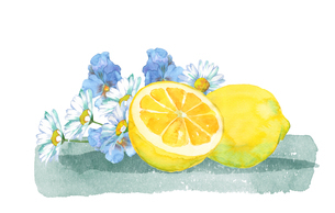 レモンと花束水彩画のイラスト素材 [FYI04502302]
