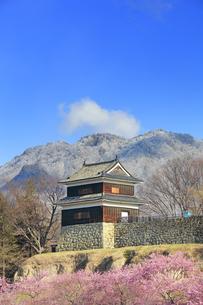 霧氷の虚空蔵山と桜並木と西櫓の写真素材 [FYI04502587]