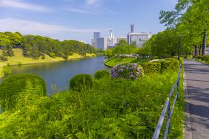 皇居を周回する遊歩道の写真素材 [FYI04502862]