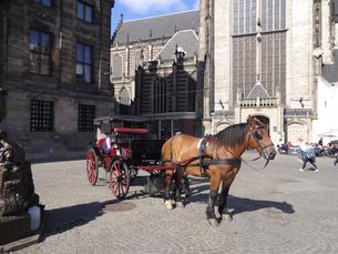 アムステルダムの馬車  carriage in Amsterdam  の写真素材 [FYI04503099]