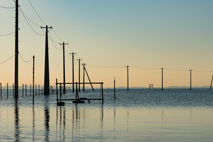 久津間海岸から見た海中電柱の写真素材 [FYI04503279]