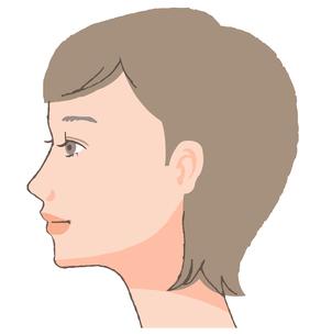 横顔 女性のイラスト素材 [FYI04503617]