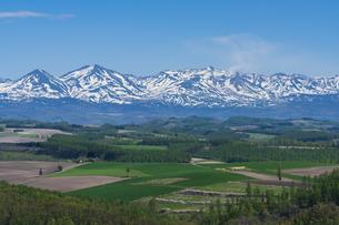 就実の丘から望む十勝岳連峰の写真素材 [FYI04503941]