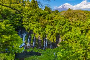 白糸の滝と富士山の写真素材 [FYI04504125]