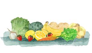 野菜と果物のイラスト素材 [FYI04504139]