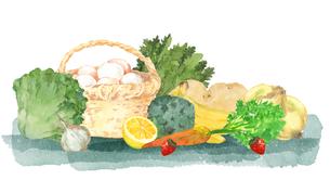 卵と野菜と果物のイラスト素材 [FYI04504141]