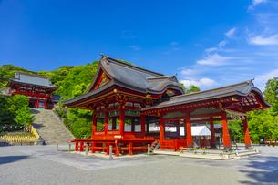 鶴岡八幡宮の本宮と舞殿の写真素材 [FYI04504162]