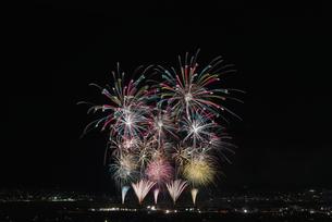 江戸時代3大花火 神明の花火の写真素材 [FYI04504307]