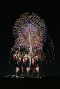 とりで利根川大花火の写真素材 [FYI04504323]