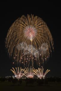 とりで利根川大花火の写真素材 [FYI04504324]