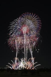 とりで利根川大花火の写真素材 [FYI04504325]