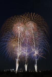 とりで利根川大花火の写真素材 [FYI04504327]