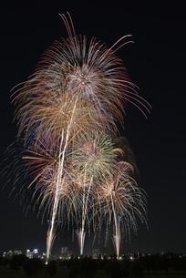 とりで利根川大花火の写真素材 [FYI04504329]