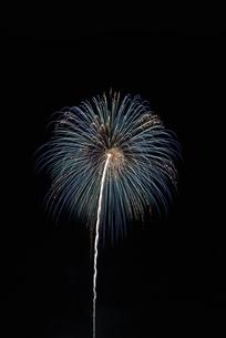 とりで利根川大花火の写真素材 [FYI04504333]