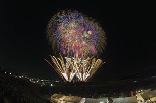 常総きぬ川花火大会の写真素材 [FYI04504377]