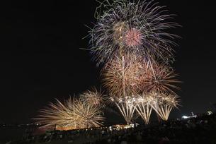 千代田の祭 川せがきの写真素材 [FYI04504382]