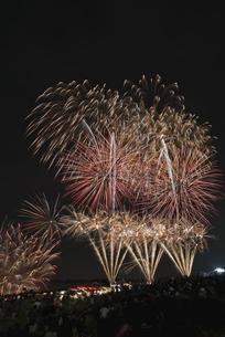 千代田の祭 川せがきの写真素材 [FYI04504386]