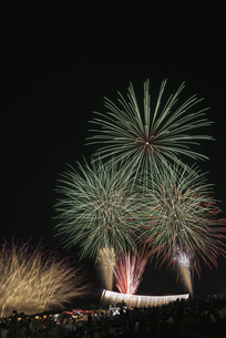 千代田の祭 川せがきの写真素材 [FYI04504389]