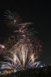 千代田の祭 川せがきの写真素材 [FYI04504391]