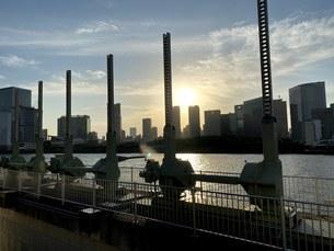 築地大橋の写真素材 [FYI04504644]