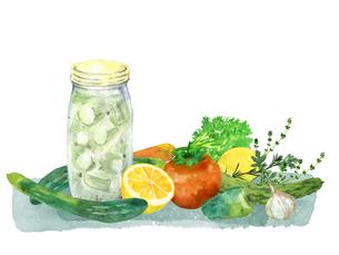 野菜とハーブとピクルスのイラスト素材 [FYI04505060]