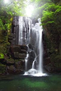 桑ノ木の滝と新緑の写真素材 [FYI04505281]