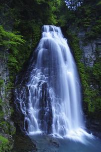 番所大滝と新緑の写真素材 [FYI04505284]