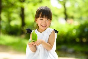 葉っぱで遊ぶ女の子の写真素材 [FYI04505541]