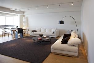 ソファーのあるリビングルームの写真素材 [FYI04506096]