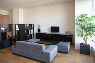 黒い家具のあるリビングルームの写真素材 [FYI04506100]