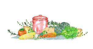野菜とハーブと鍋のイラスト素材 [FYI04506116]