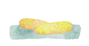 トウモロコシ水彩画のイラスト素材 [FYI04506118]