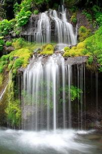 5月 吐竜(どりゅう)の滝の写真素材 [FYI04507098]