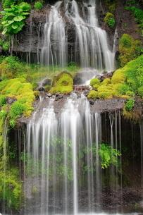5月 吐竜(どりゅう)の滝の写真素材 [FYI04507099]