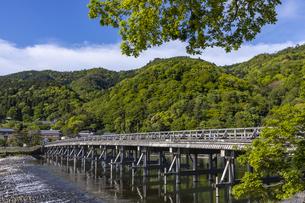 新緑の嵐山渡月橋の写真素材 [FYI04507148]