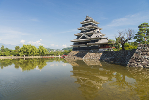 国宝 松本城の写真素材 [FYI04507351]