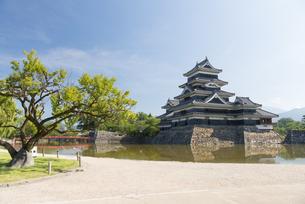 国宝 松本城の写真素材 [FYI04507407]