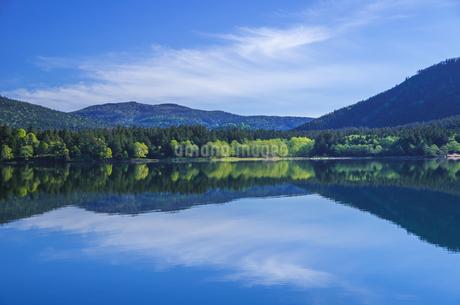 新緑の然別湖の写真素材 [FYI04507623]