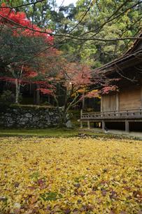 若狭神宮寺の写真素材 [FYI04507711]
