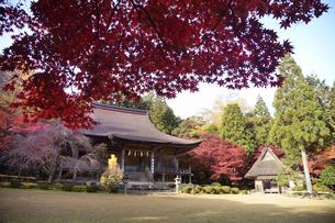若狭神宮寺の写真素材 [FYI04507712]