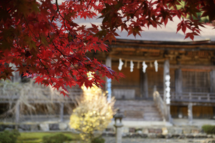 若狭神宮寺の写真素材 [FYI04507713]