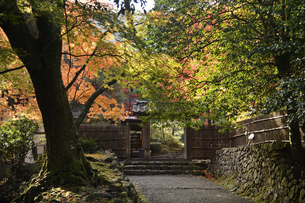 若狭神宮寺の写真素材 [FYI04507714]