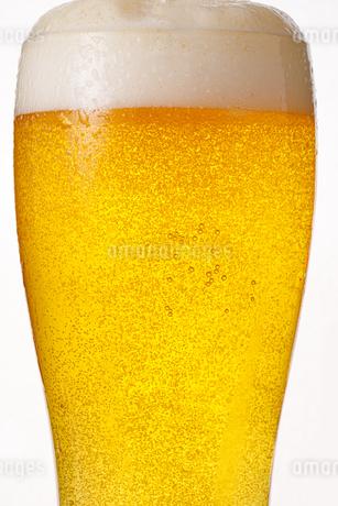 生ビールの写真素材 [FYI04508619]