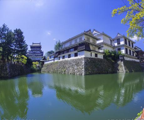 福岡県 桜 小倉城 (勝山公園)の写真素材 [FYI04508828]
