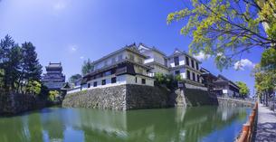 福岡県 桜 小倉城 (勝山公園)の写真素材 [FYI04508830]