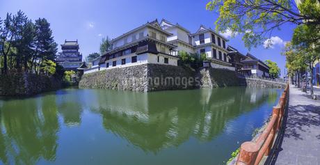 福岡県 桜 小倉城 (勝山公園)の写真素材 [FYI04508832]