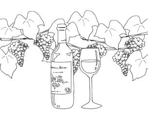 ワインと葡萄線画のイラスト素材 [FYI04508843]