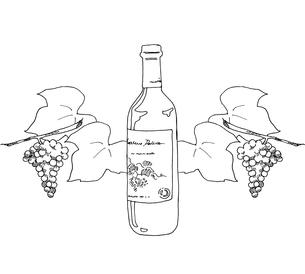 ワインと葡萄線画のイラスト素材 [FYI04508844]