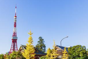 秋の芝公園と東京タワーの写真素材 [FYI04509084]