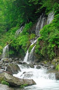 6月 緑の吐竜の滝の写真素材 [FYI04509178]